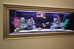 akwarium w ścianie 1