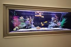 akwarium w ścianie 3