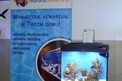 Akwarium-morskie-Warszawskie-Dni-Akwarystyki-1