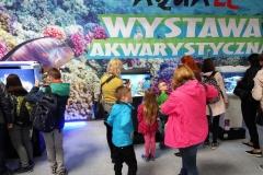 Akwarium-morskie-Wystawa-akwarystyczna-pierwsze-miejsce-3